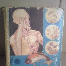Libros de segunda mano: LIBRO DE TEXTO. Lote 31084580