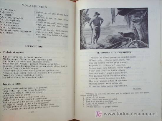 Libros de segunda mano: LIBRO ESCOLAR , LENGUA LATINA , SEGUNDO CURSO 1954 , EDITORIAL LUIS VIVES - Foto 5 - 24804649