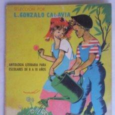 Libros de segunda mano: JARDIN DE PALABRAS, ANTOLOGIA LITERARIA PARA ESCOLARES DE 8 Y 10 AÑOS, 1963, PARANINFO. Lote 38757899