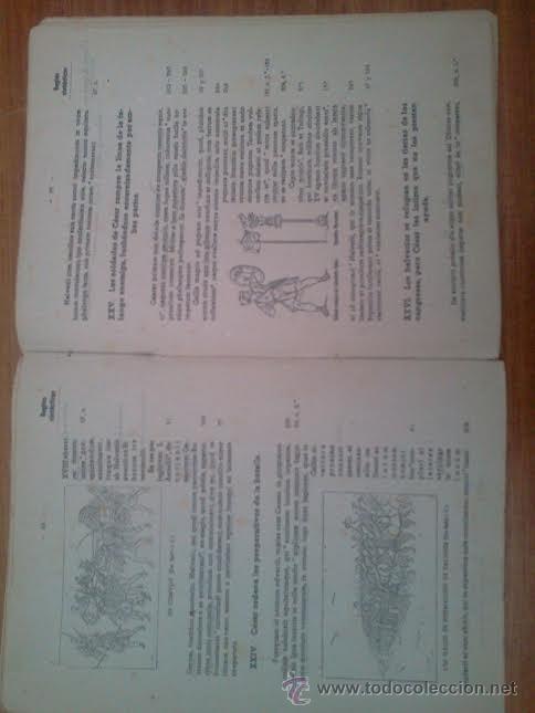 Libros de segunda mano: Antología latina. Volumen primero, 1941 - Foto 2 - 43245887
