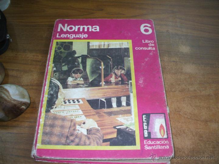 Libro norma lengua editorial santillana comprar libros for Libro fuera de norma