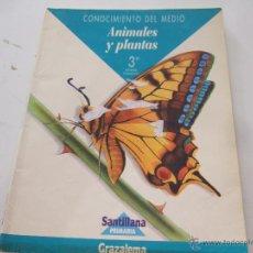 Libros de segunda mano: CUADERNILLO CONOCIMIENTO DEL MEDIO 'ANIMALES Y PLANTAS'. Lote 45319327