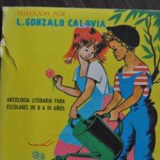 Libros de segunda mano: JARDÍN DE PALABRAS. ANTOLOGÍA LITERARIA PARA ESCOLARES DE 8 A 10 AÑOS. 1963. PARANINFO. . Lote 45599723