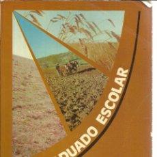 Libros de segunda mano: LIBRO DE TRABAJO DE LENGUAJE. GRADUADO ESCOLAR. ANAYA. MADRID. 1976. Lote 45989998