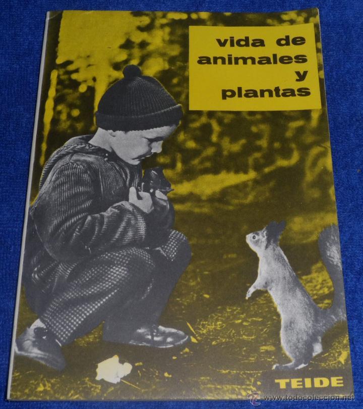 VIDA DE ANIAMLES Y PLANTAS (1963) ¡IMPECABLE! (Libros de Segunda Mano - Libros de Texto )