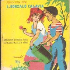 Libros de segunda mano: JARDÍN DE PALABRAS. ANTOLOGÍA LITERARIA PARA ESCOLARES DE 8 A 10 AÑOS. - L. GONZALO CALAVIA - 1963. Lote 46341868