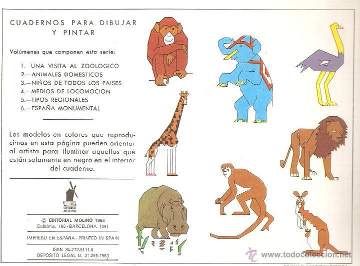 Para Pintar Zoologico - tongawale.com