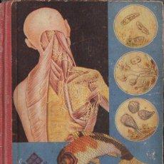 Libros de segunda mano: EDELVIVES : CIENCIAS NATURALES CUARTO CURSO (1955). Lote 76897035