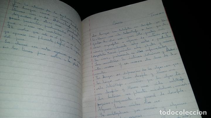 Libros de segunda mano: colegio de santo domingo / pp dominicos / oviedo / manuscrito cuaderno escolar / escrito / 1959 - Foto 3 - 82303168