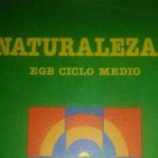 Libros de segunda mano: NATURALEZA 3 EGB CICLO MEDIO. SANTILLANA. 1988. PÁGINAS 120. PESO 340 GR.. Lote 110059599