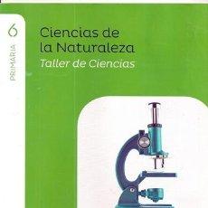 Libros de segunda mano: CIENCIAS DE LA NATURALEZA 6 PRIMARIA - TALLER DE CIENCIAS / PROYECTO SABER HACER - SANTILLANA. Lote 118678955