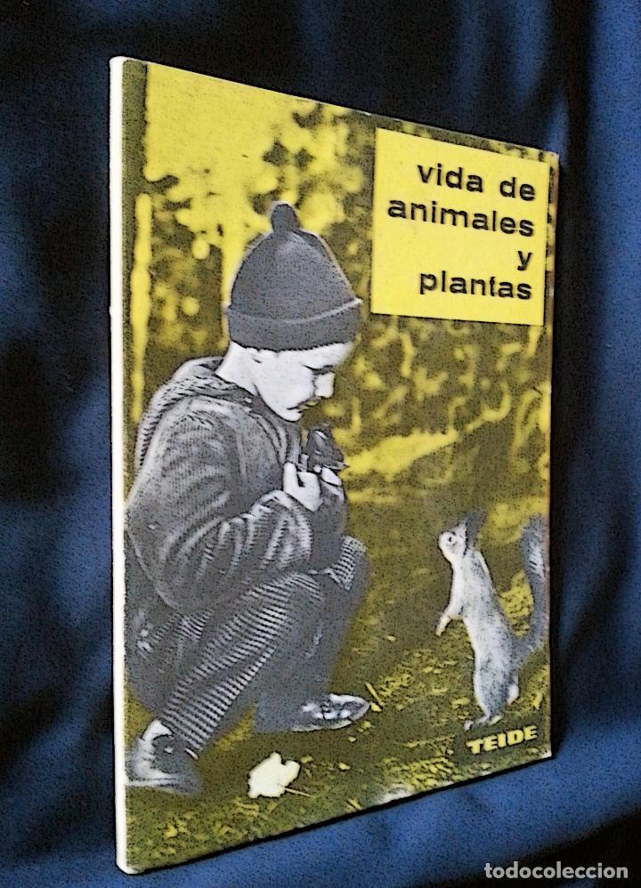 VIDA DE ANIMALES Y PLANTAS | ATKINSON | PARANINFO 1963 (Libros de Segunda Mano - Libros de Texto )