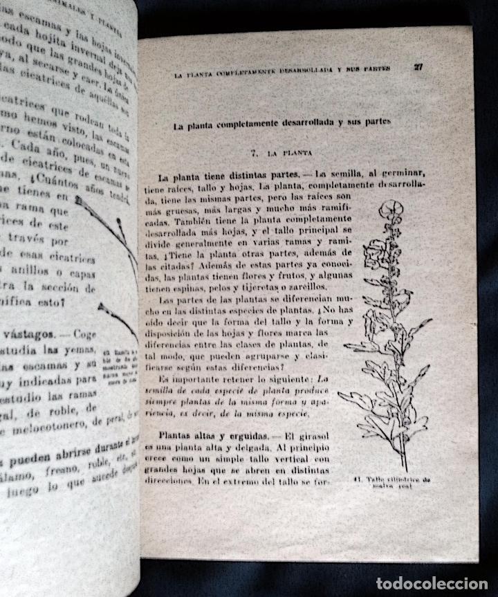 Libros de segunda mano: VIDA DE ANIMALES Y PLANTAS | ATKINSON | PARANINFO 1963 - Foto 4 - 118845435