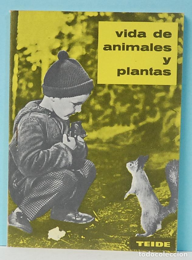 VIDA DE ANIMALES Y PLANTAS. EXPERIENCIAS.EDITORIAL TEIDE.1963 (Libros de Segunda Mano - Libros de Texto )