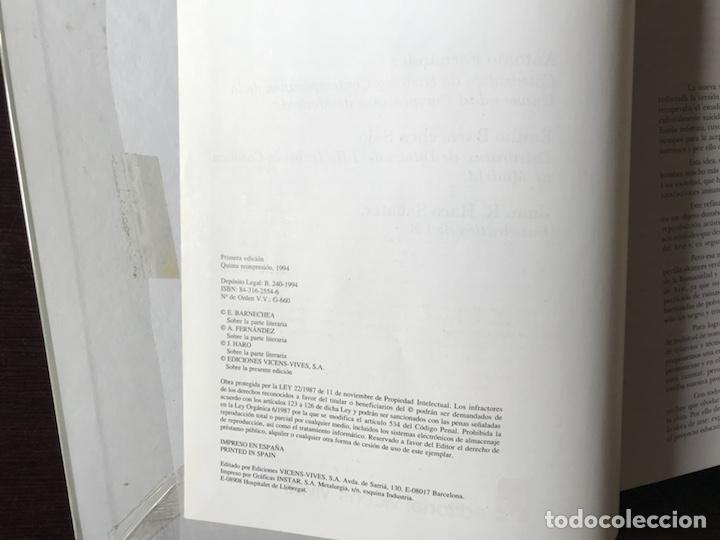 Libros de segunda mano: Historia del Arte. Vicens Vives - Foto 3 - 180250523