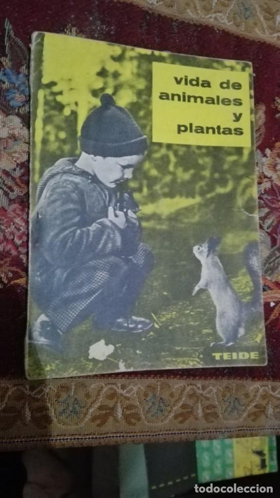 VIDA DE ANIMALES Y PLANTAS TEIDE (Libros de Segunda Mano - Libros de Texto )