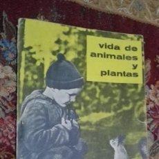 Libros de segunda mano: VIDA DE ANIMALES Y PLANTAS TEIDE. Lote 144991502