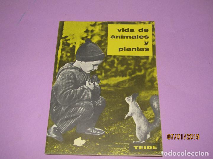 ANTIGUO LIBRO DE ESCUELA VIDA DE ANIMALES Y PLANTAS EDITORIAL PARANINFO - AÑO 1963 (Libros de Segunda Mano - Libros de Texto )