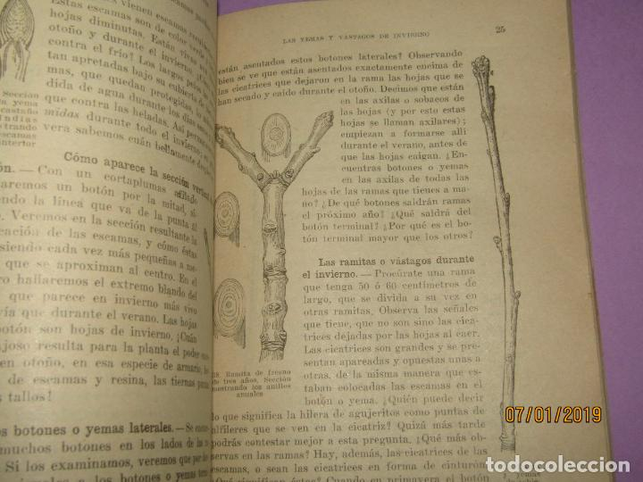 Libros de segunda mano: Antiguo Libro de Escuela VIDA DE ANIMALES Y PLANTAS Editorial PARANINFO - Año 1963 - Foto 2 - 146169310