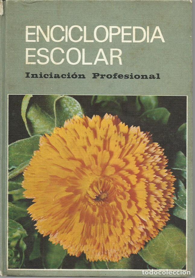 ENCICLOPEDIA ESCOLAR. INICIACIÓN PROFESIONAL. (ED. HIJOS DE SANTIAGO RODRÍGUEZ, BURGOS, 1973) (Libros de Segunda Mano - Libros de Texto )
