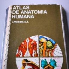 Libros de segunda mano - Atlas de Anatomía Humana ediciones Jover - 154247858