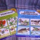 Libros de segunda mano: DOS LIBRITOS CC NATURALES LOS VEGETALES Y ANIMALES VERTEBRADOS CIENCIA FÁCIL PAMPLIEGA. Lote 159789646