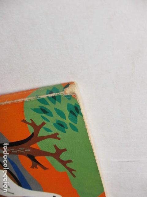 Libros de segunda mano: LES PLANTES ELS ANIMALS ELS ELEMENTS - ARTUR MARTORELL .- EDITORIAL TEIDE - Foto 3 - 160639794