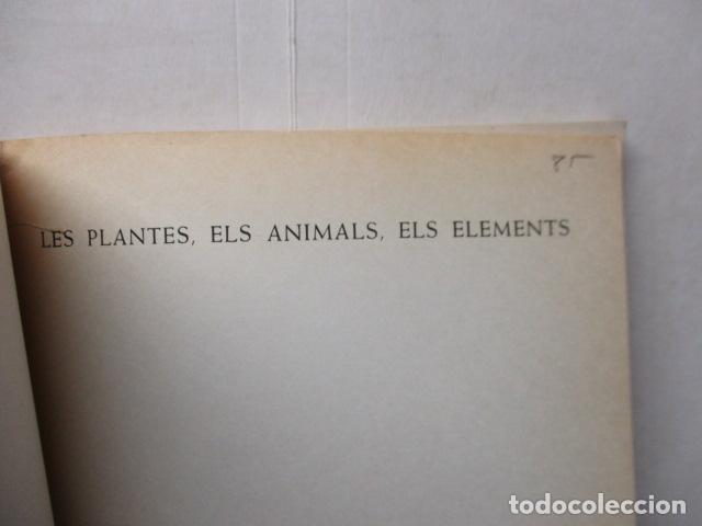 Libros de segunda mano: LES PLANTES ELS ANIMALS ELS ELEMENTS - ARTUR MARTORELL .- EDITORIAL TEIDE - Foto 5 - 160639794