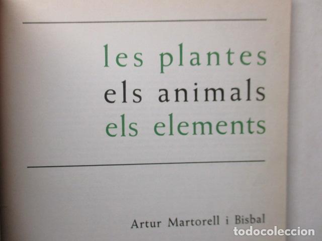 Libros de segunda mano: LES PLANTES ELS ANIMALS ELS ELEMENTS - ARTUR MARTORELL .- EDITORIAL TEIDE - Foto 6 - 160639794