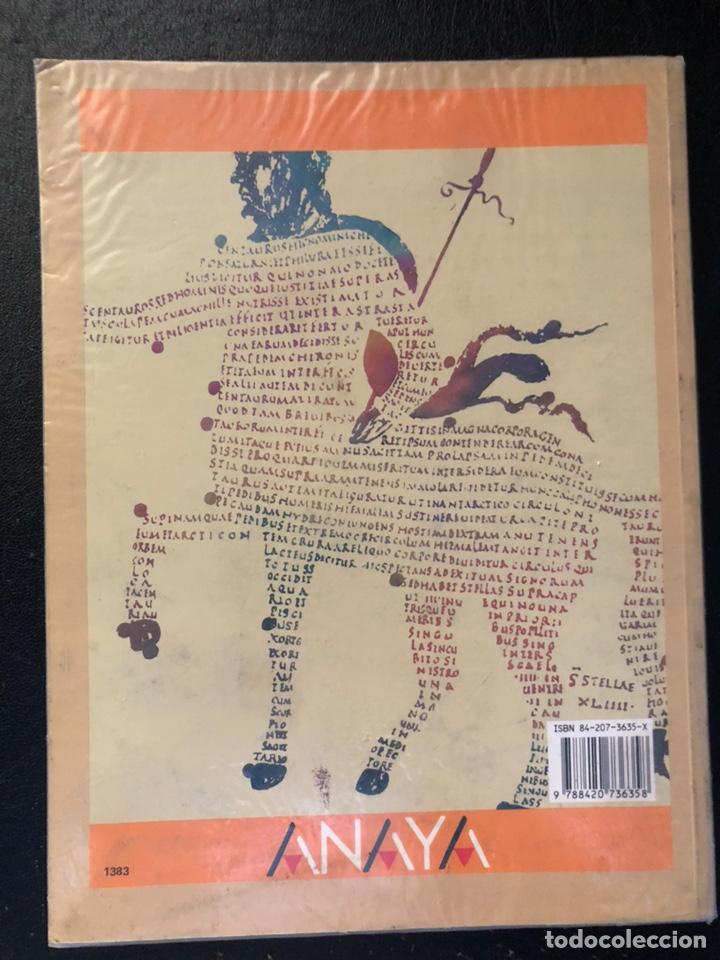 Libros de segunda mano: LIBRO DE TEXTO DE LATÍN SEGUNDO DE BUP. 1991 - Foto 2 - 171191138
