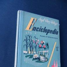 Libros de segunda mano: ENCICLOPEDIA 1º CURSO / ANGEL PEREZ RODRIGO / EDITOR - LOPEZ MEZQUIDA - VALENCIA AÑOS 50 / SIN USAR. Lote 167641258