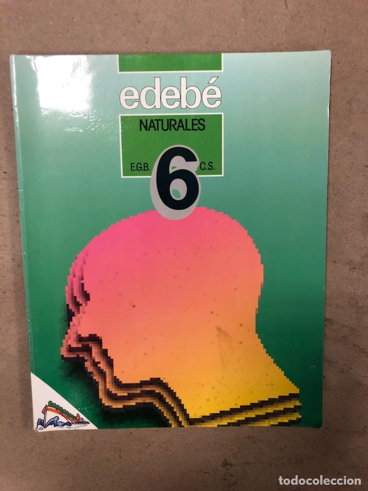 Libros de segunda mano: NATURALES 6º EGB Y 7º EGB. EDEBÉ (1988). 2 LIBROS. - Foto 2 - 169230982