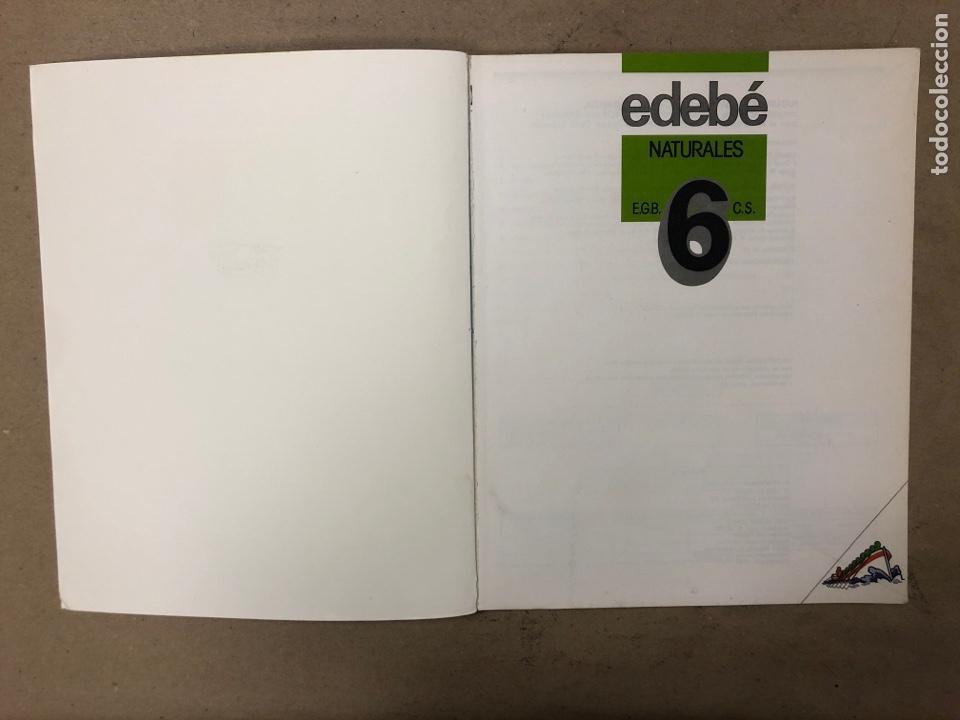 Libros de segunda mano: NATURALES 6º EGB Y 7º EGB. EDEBÉ (1988). 2 LIBROS. - Foto 3 - 169230982