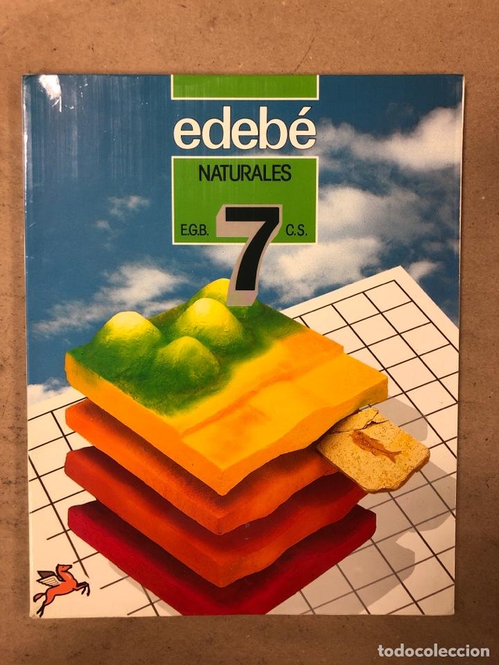 Libros de segunda mano: NATURALES 6º EGB Y 7º EGB. EDEBÉ (1988). 2 LIBROS. - Foto 9 - 169230982