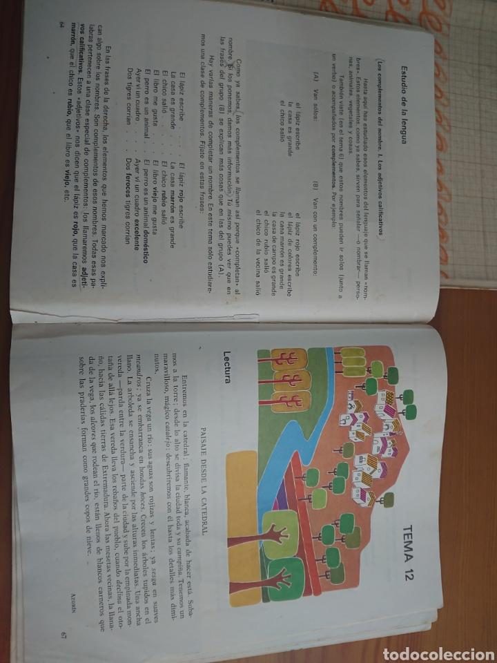 Libros de segunda mano: Lenguaje Editorial Teide 3° 4° 6° y 7° EGB - Foto 2 - 170187377