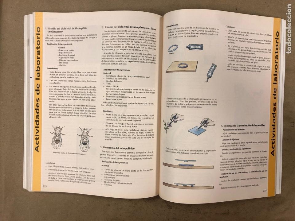 Libros de segunda mano: BIOLOGÍA - GEOLOGÍA. VV.AA. 1º BACHILLERATO. EDITA: EREIN 1997. 349 PÁGINAS. COMO NUEVO. - Foto 7 - 174898157