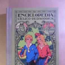 Libros de segunda mano: ENCICLOPEDIA CICLICO-PEDAGOGICA, GRADO MEDIO - JOSE DALMAU CARLES - SALVAT - 1999 * PERFECTO ESTADO. Lote 179108042