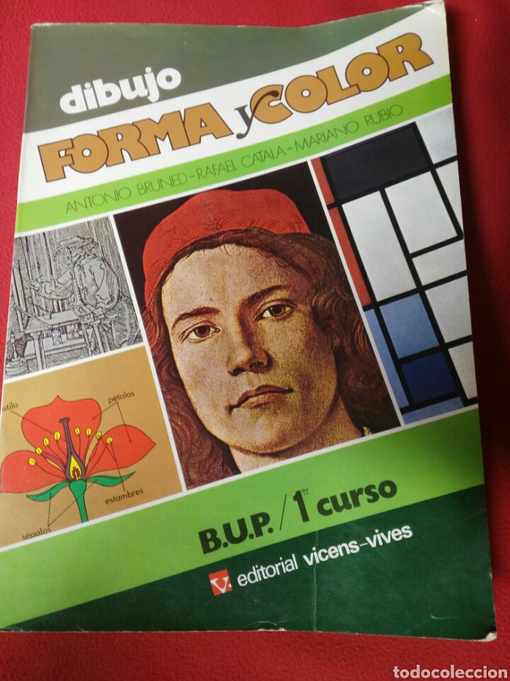 DIBUJO FORMA Y COLOR B.U.P.1 (Libros de Segunda Mano - Libros de Texto )