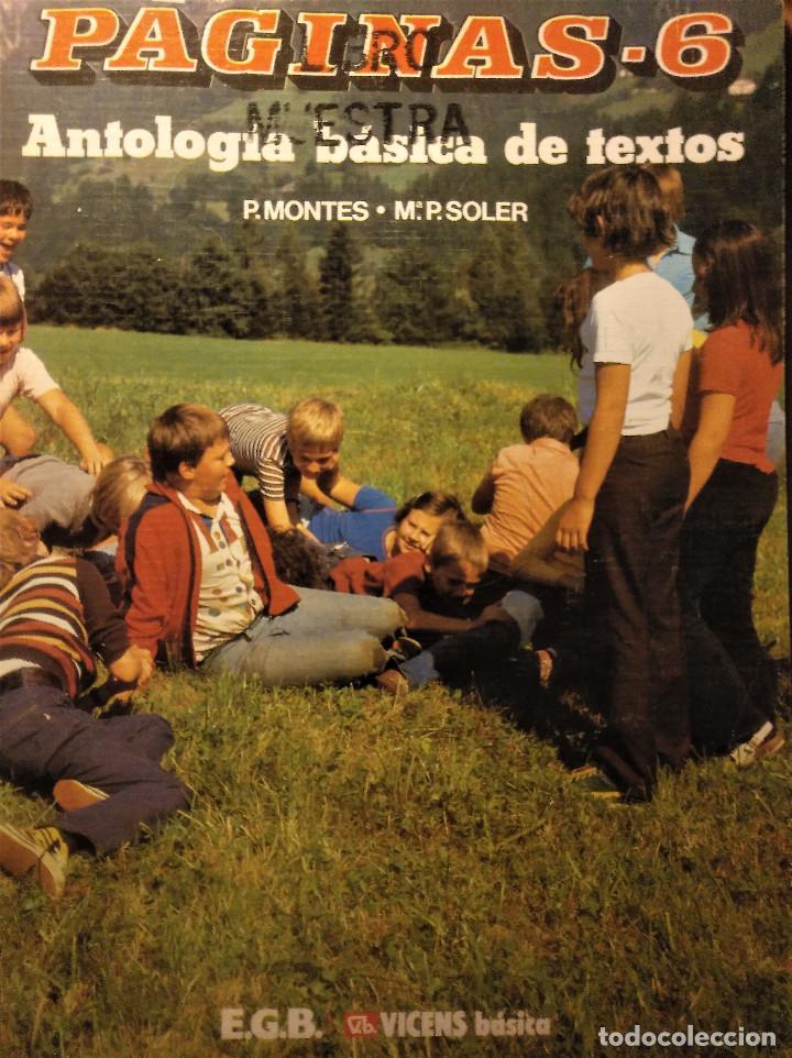PÁGINAS 6, ANTOLOGÍA BÁSICA DE TEXTOS, MONTES-SOLER, E.G.B, 1988 (Libros de Segunda Mano - Libros de Texto )
