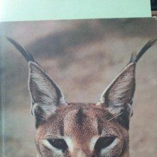 Libros de segunda mano: THE ILUSTRATED ENCYCLOPEDIA OF THE ANIMAL KINDOM, TOMO 2. TEXTO EN INGLES. Lote 279550808