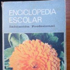 Libros de segunda mano: NUEVA ENCICLOPEDIA ESCOLAR HSR. INICIACIÓN PROFESIONAL (12-15 AÑOS). HIJOS SANTIAGO RODRÍGUEZ, 1973.. Lote 293944158