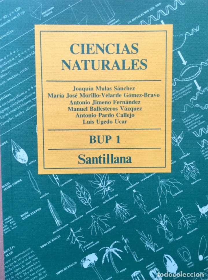 CIENCIAS NATURALES 1º BUP SANTILLANA. NUEVO (Libros Nuevos - Libros de Texto - Bachillerato)