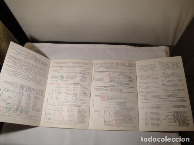 Libros: Guía de Lenguaje. 4ª edición. Año 1976. Publicaciones Quesada. NUEVA. - Foto 3 - 176587238