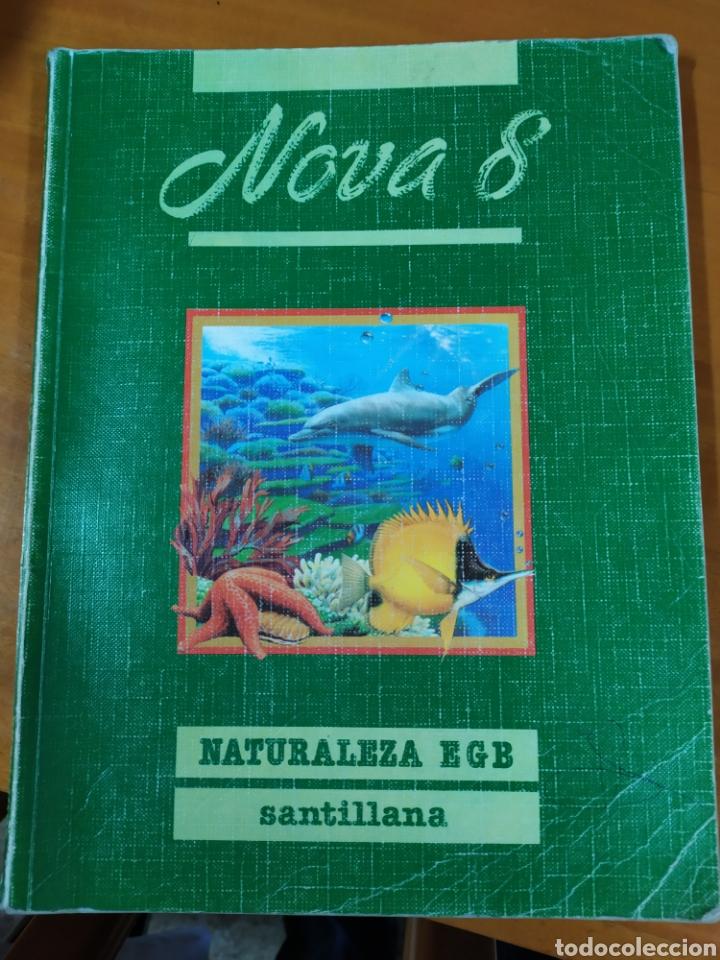 LIBRO NATURALEZA 8 EGB SANTILLANA (Libros Nuevos - Libros de Texto - Infantil y Primaria)