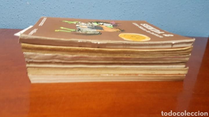Libros: LOTE LIBROS SENDA - Foto 4 - 247563250