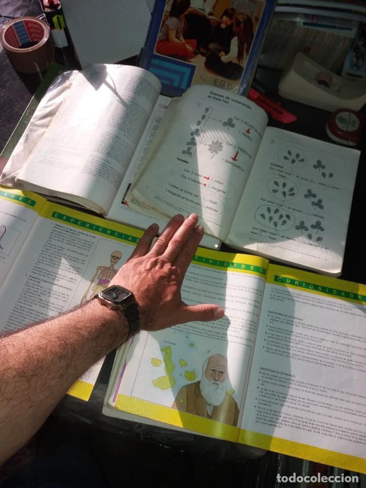 Libros: COLECCIÓN DE LIBROS DE TEXTO 2 - Foto 2 - 266057388