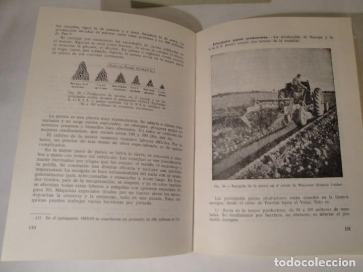 Libros: Geografía Económica I. Primer Curso. Autor: D. Luis Pérez Pardo. Año 1972. - Foto 4 - 273166818