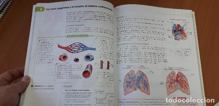 Libros: 11-00664-ISBN-9-788467-576009 - BIOLOGIA Y GEOLOGIA -3º ESO - Foto 3 - 276175958