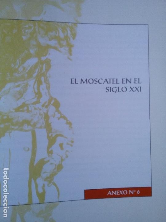 Libros: EL VINO DE MOSCATEL EN LA COMUNIDAD VALENCIANA. - Foto 7 - 61615528