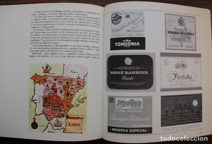 Libros: VIÑAS Y VINOS. MIGUEL A. TORRES. - Foto 2 - 133426242
